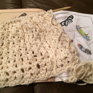 Day 37: More knitting and coloring of butterflies...but I'm not complaining.